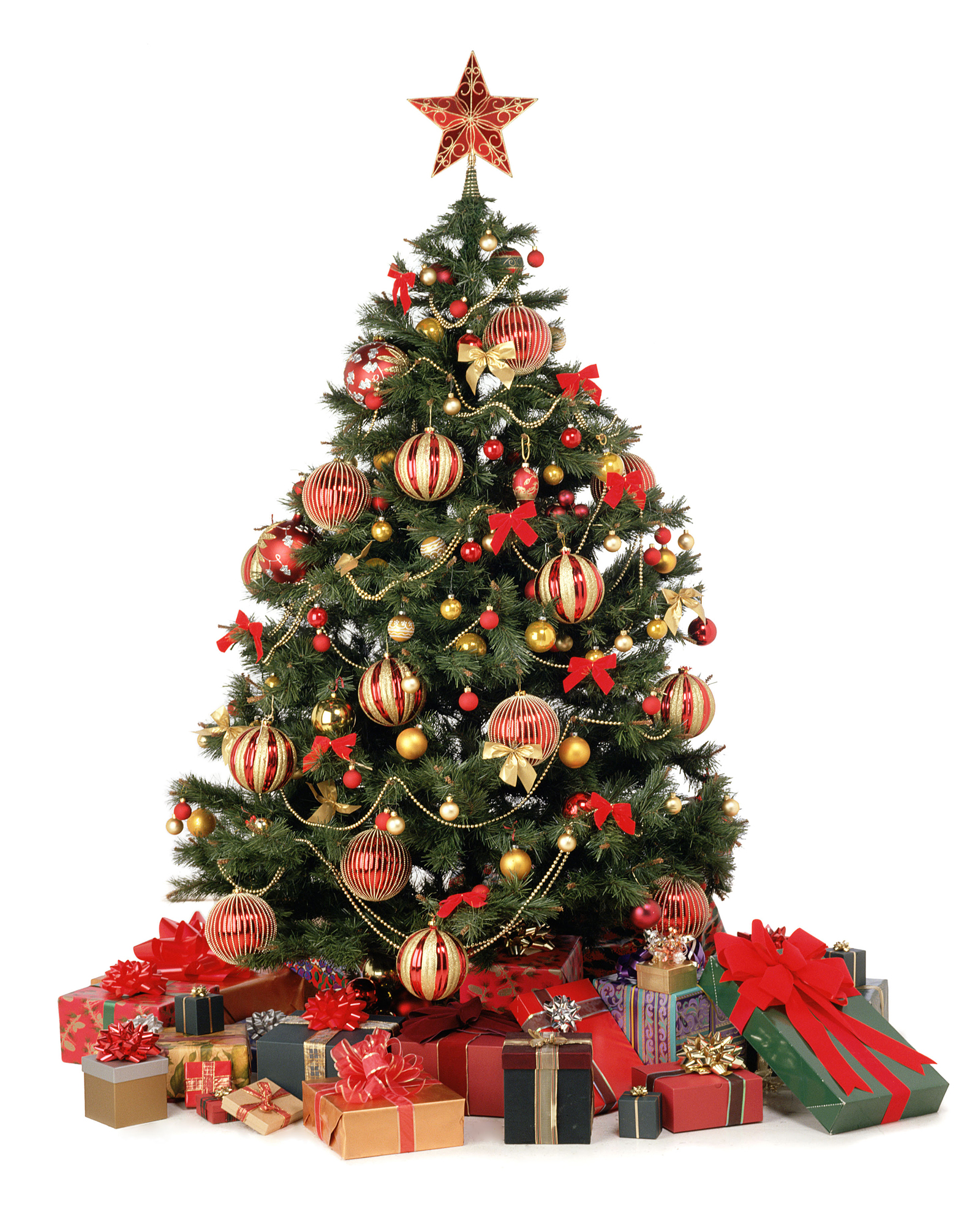 3. What a lovely Christmas tree